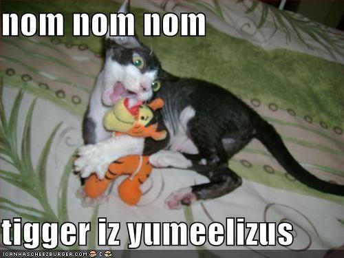 Cheezburger Image 531205376