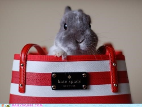 acting like animals bag bunny custom made designer fashion handbag happy bunday kate spade rabbit - 5312155136
