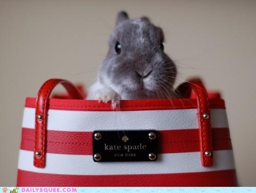 acting like animals bag bunny custom made designer fashion handbag happy bunday kate spade rabbit - 5312155136