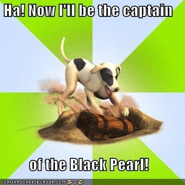 black pearl treasure - 5312560640