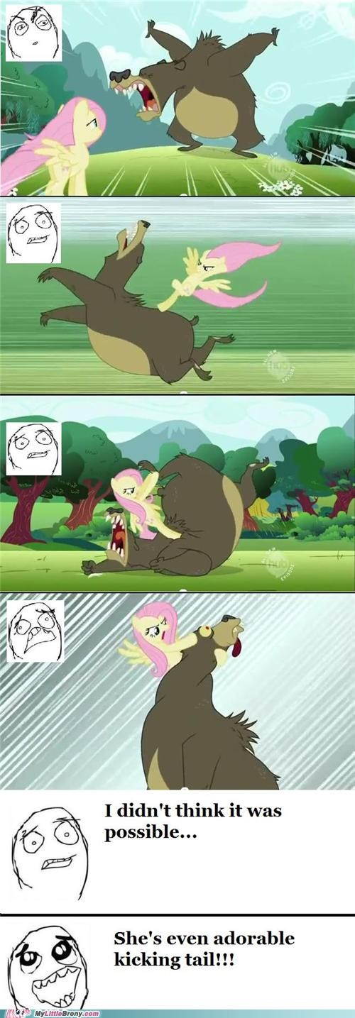 awesome,bear,best of week,comics,fighting,fluttershy,massage,tension