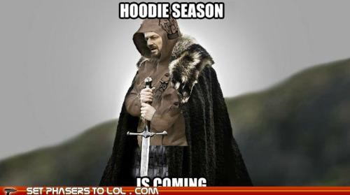Game of Thrones hipster hoodie sean bean stark Winter Is Coming - 5315386368