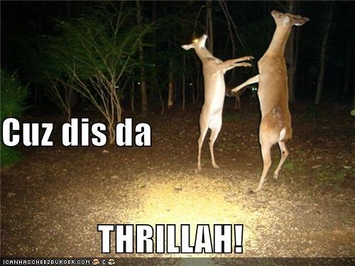 dancing,deer,halloween,michael jackson,thriller