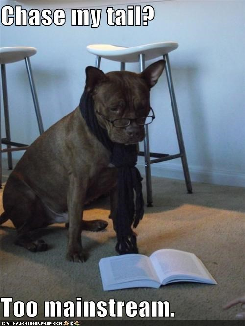 book,glasses,hipster,mainstream,mixed breed,whatbreed