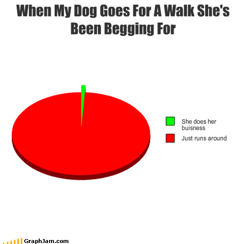 dogs pets Pie Chart pooping walk - 5316595200