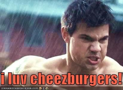 Cheezburger Image 5316634624