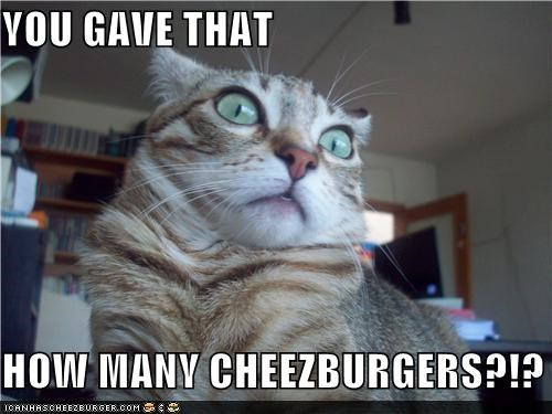 Cheezburger Image 5316850944