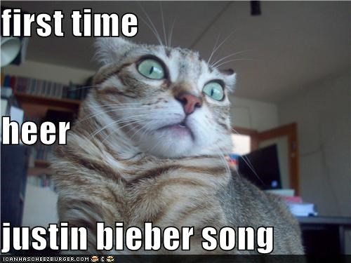 best of the week,cannot unhear,caption,captioned,cat,do not want,hearing,horrified,justin bieber,song