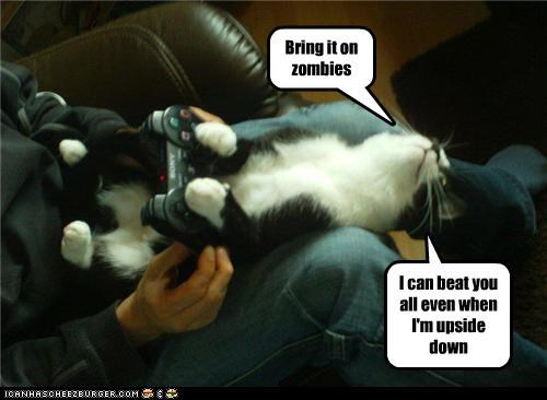 Bring it on zombies I can beat you all even when I'm upside down