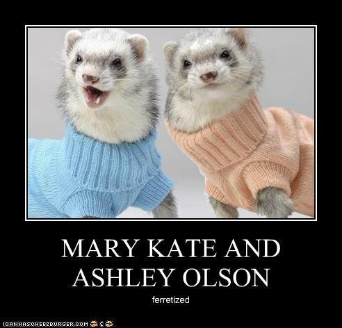 MARY KATE AND ASHLEY OLSON ferretized