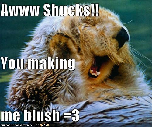adorable,animals,aww shucks,blush,blushing,flirt,flirting,otter