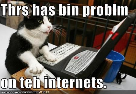 cat,computer,dont worry,I Can Has Cheezburger,im-from-the-internet,internet,interwebs,laptop,problem