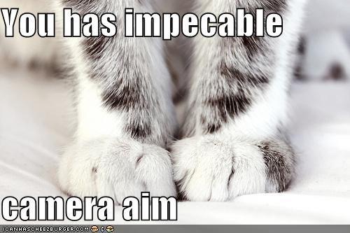 aim camera caption captioned cat feet impeccable Photo sarcasm - 5320851712