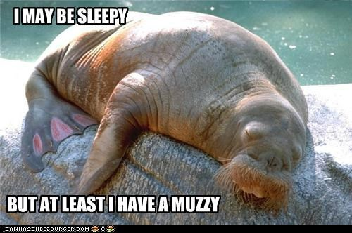 I MAY BE SLEEPY BUT AT LEAST I HAVE A MUZZY