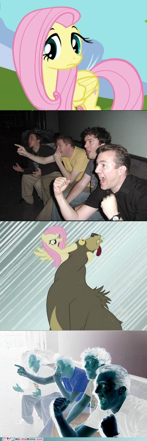 bear best of week comic crazy reaction fluttershy meme reaction guys wrestle - 5322137600