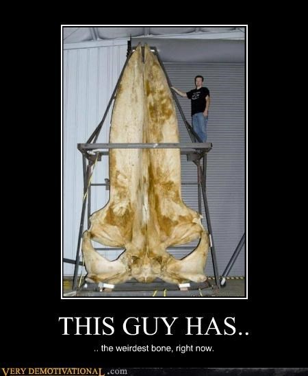 bone hilarious huge guy weirdest wtf - 5322454016
