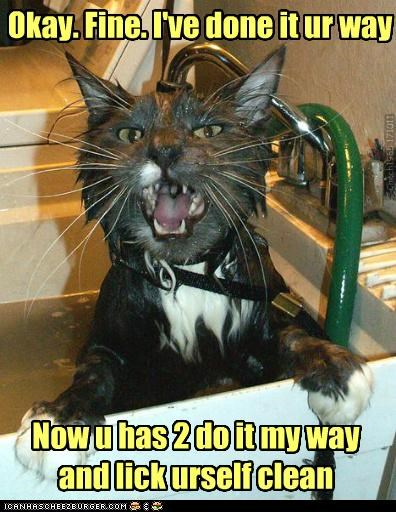 captioned bath mine wet self deal clean caption way cat arrangement your lick - 5322492928