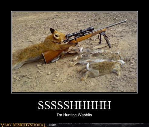 fox hilarious hunting rabbit shh