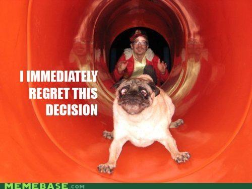 animemes dogs doom Memes pug regret slide - 5323363072