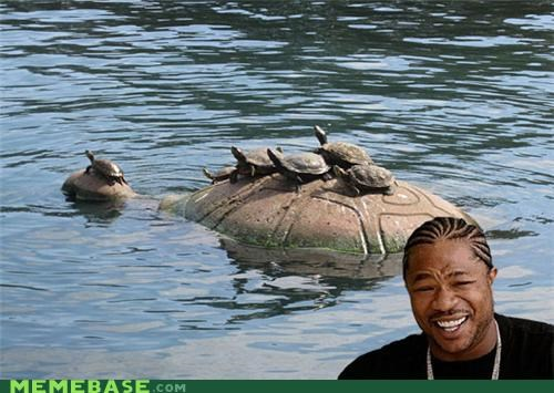 animemes riding theory turtles world yo dawg - 5323442944