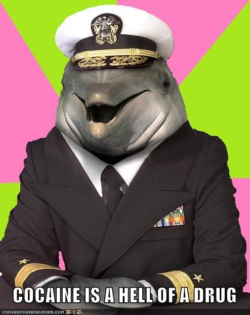 captain dolphin drugs hat man Memes ship the white stuff - 5323447296