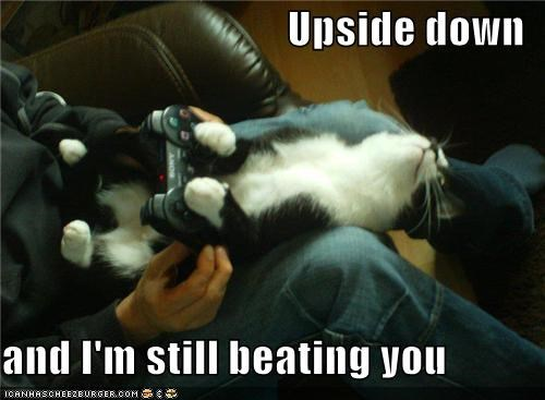 beating,caption,captioned,cat,Hall of Fame,handicap,playing,playstation,still,upside down,video game,video games,you