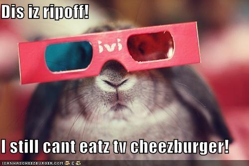 Cheezburger Image 5324123392