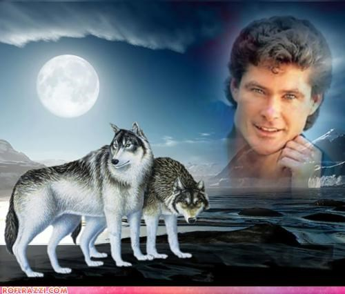 actor,celeb,david hasselhoff,funny,Hall of Fame,shoop,wtf