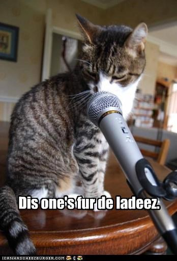 cat,dj,I Can Has Cheezburger,microphone,Music,song dedication,this-ones-for-the-ladies