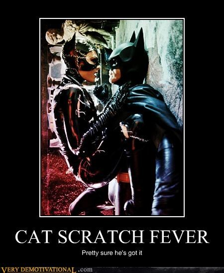 CAT SCRATCH FEVER Pretty sure he's got it