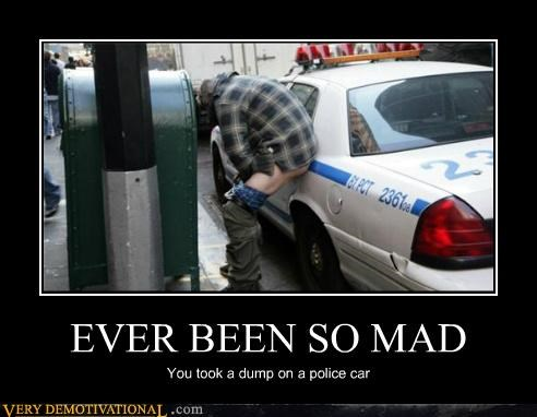 EVER BEEN SO MAD You took a dump on a police car