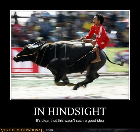 bad idea,bull riding,clear,hindsight,idiots