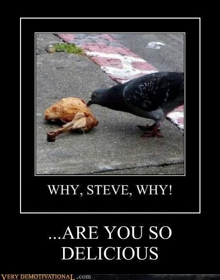 animals cannibal delicious hilarious pigeon - 5326712832