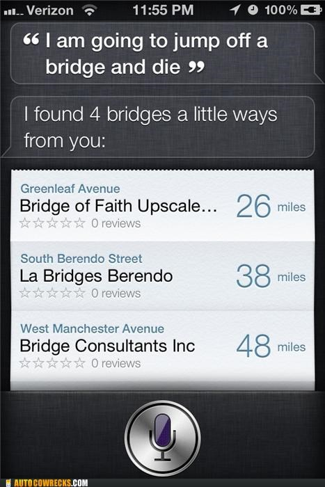 bridge,Hall of Fame,locator,siri,suicide