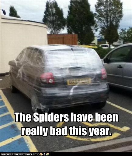 car car wrapped in cellophane cellophane joke prank spider - 5327729152