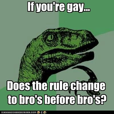 bros,gay,girls,hos,philosoraptor,rule