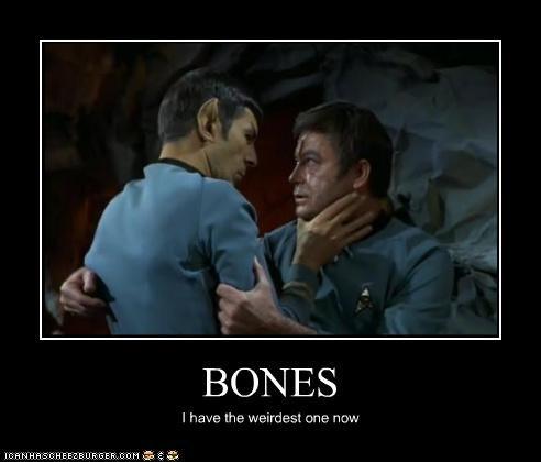 bones DeForest Kelley Leonard Nimoy McCoy Spock Star Trek - 5328258304