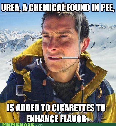 bear grylls,chemical,cigarettes,enhanced,flavor,pee,urea