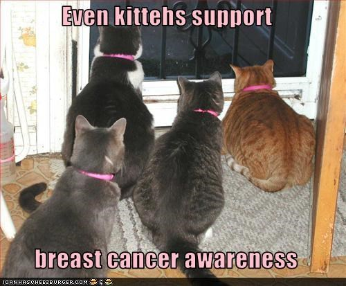 awareness Breast Cancer cancer Hall of Fame october ugs - 5328308736
