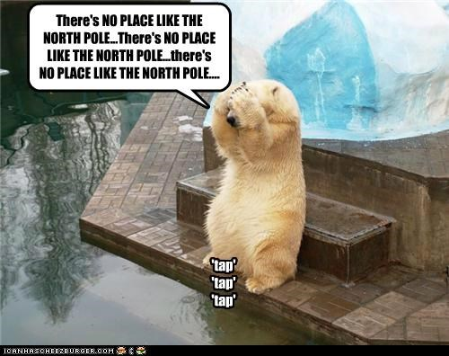 'tap' 'tap' 'tap' There's NO PLACE LIKE THE NORTH POLE...There's NO PLACE LIKE THE NORTH POLE...there's NO PLACE LIKE THE NORTH POLE....