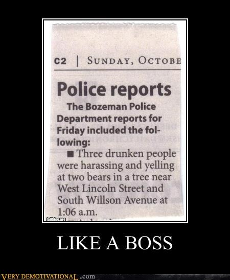 drunks,Hall of Fame,hilarious,Like a Boss,police,report