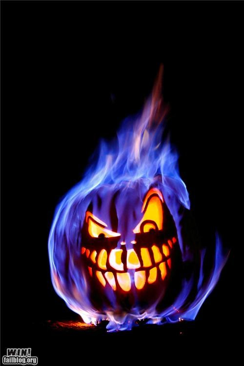 fire flaming halloween jack o lanterns pumpkins skull - 5331160576