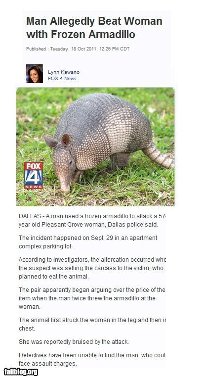 armadillo,domestic violence,failboat,g rated,Probably bad News,wtf