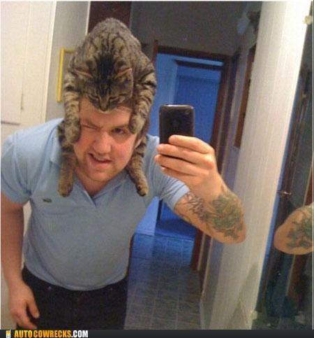 cat Hall of Fame hat self portrait self poortrait - 5331271936