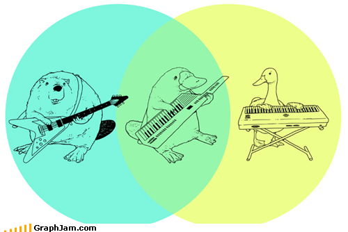 animals,best of week,keytar,Music,platypus,prince,venn diagram