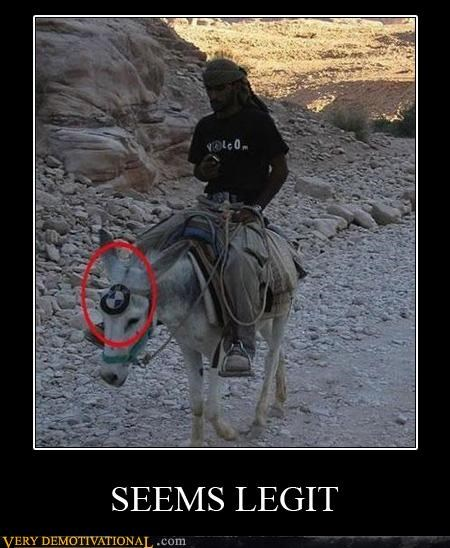 animals,bmw,donkey,hilarious,seems legit