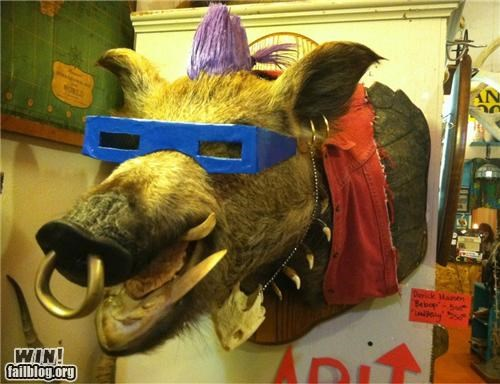 art bebop boar craft nerdgasm nope taxidermy TMNT - 5331664896