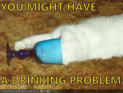 caption captioned cat drinking glass Hall of Fame have just saying might observation problem stuck you - 5332782336