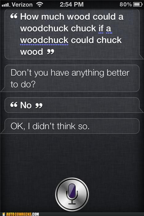 bored,iphone,siri,wood,woodchuck