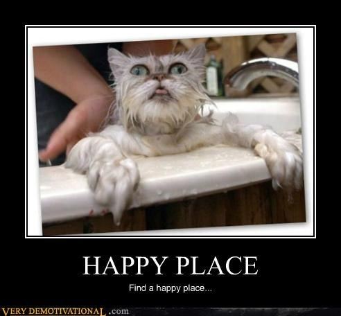 bath cat happy place hell Terrifying - 5333515008